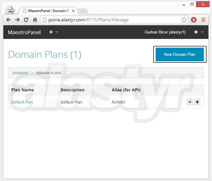 domain-plani-nasil-olusturulur-003