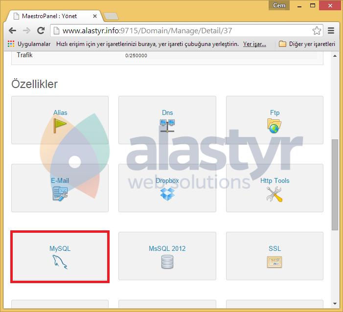 Yönetim panelinizinÖzelliklerbölümünde bulunanMySQLsayfasına giriş yapın.