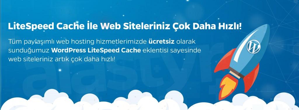 Alastyr-LiteSpeed-Cache