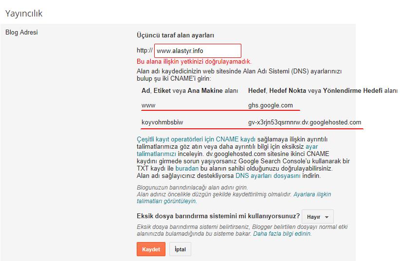 Bloger DNS Ayarları