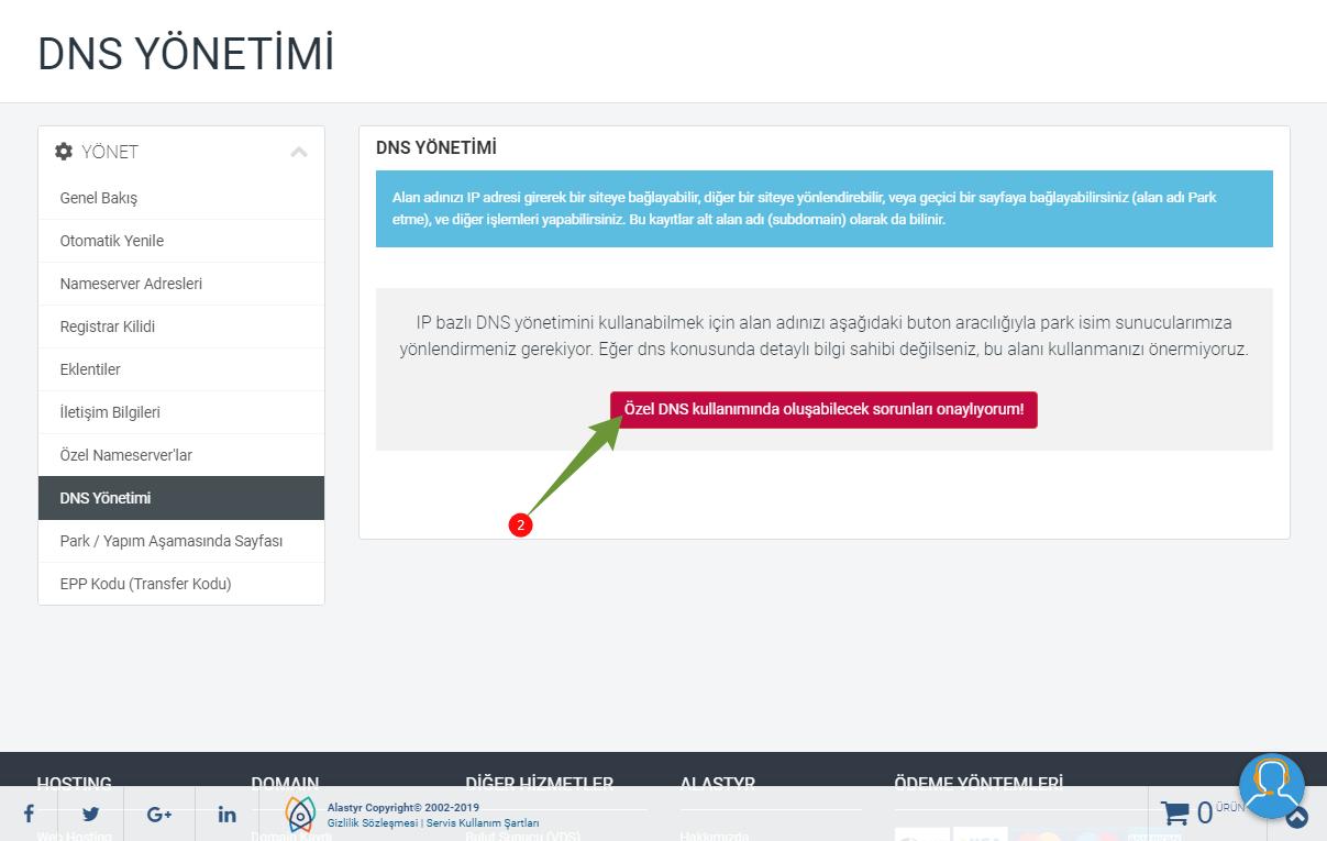 Alastyr DNS Güncelleme Ekranı