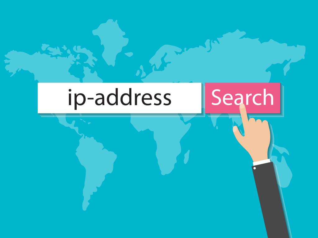 ip-adresi-bulma