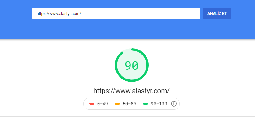google-page-speed-insight