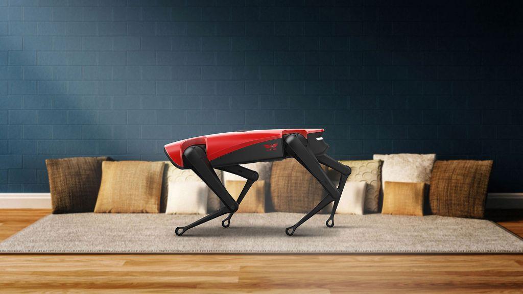 AlphaDog-spot-robot-kopekler